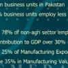Future Of Small And Medium Enterprises In Pakistan Examples
