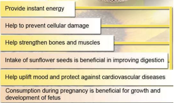 Sunflower Benefits Information About Sunflower Seeds For Health