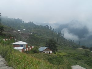 Malam Jabba Ski Resort Weather  (18)