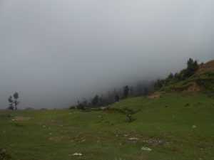 Malam Jabba Ski Resort Weather  (23)