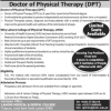 Doctor Of Physical Therapy DPT Program Scope Details Information Salary