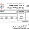 5th Class Urdu Model Paper 2017 PEC Issued Board Sample Papers