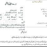 Chatni Recipe In Urdu